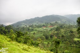 Sceneries from Batwa house to the hills of Bwindi Impenetrable Forest, Uganda