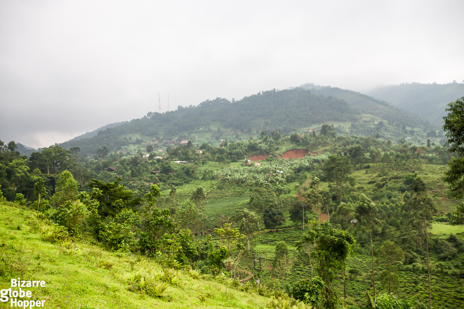 an afternoon with the batwa pygmies of bwindi impenetrable forest