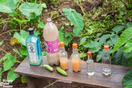 The different stages of banana gin, Waragi, in Bwindi Impenetrable Forest National Park, Uganda