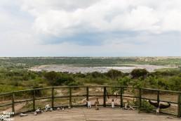 Kasenyi Safari Camp in Queen Eizabeth National Park, Uganda