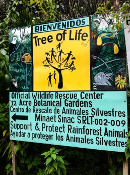 The sign of the Tree of Life wildlife sanctuary in Cahuita, Costa Rica