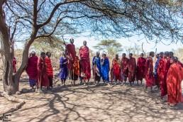 The traditional jumping of the Maasai, Ngorongoro, Tanzania