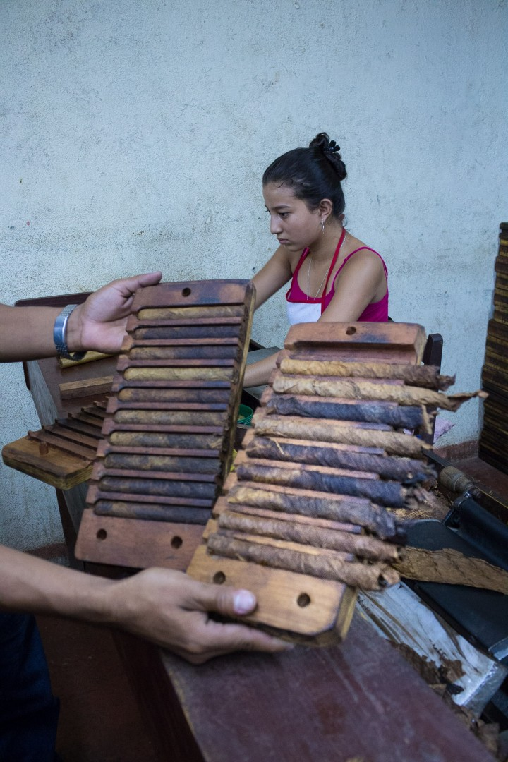 cigars in the making in esteli, nicaragua