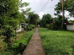 San juan de Nicaragua, marshlands, San Juan del Norte, Greytown Nicaragua