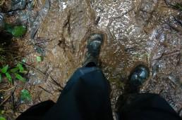 Hiking and getting muddy in Indio Maiz reserve