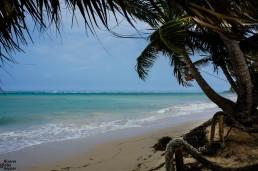 Paradise beach in Little Corn Island, Nicaragua