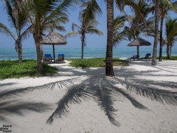 The paradise beach in front of Baraza Resort & Spa, Zanzibar
