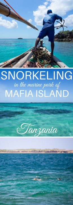 Tanzania's Mafia Island offers world-class snorkeling and diving. Diversity and reefs are among the best in the Indian Ocean. #Tanzania #MafiaIsland #snorkeling