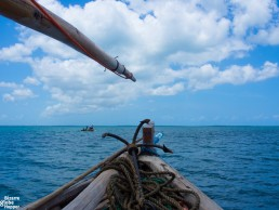 Sailing with a tradional dhow in Chole Bay, Mafia Island, Tanzania