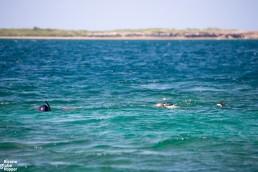 Snorkeling at Kinasi Pass Islets, Mafia Island