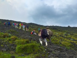 The steep last leg of the Nyiragongo volcano trek-