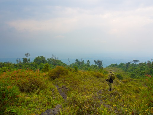 Ranger looking the view towards Virunga National Park during the Nyiragongo volcano trek