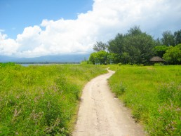 Road to the green inland of Gili Meno, Indonesia