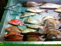 The fish at Gili Trawagan's night food market