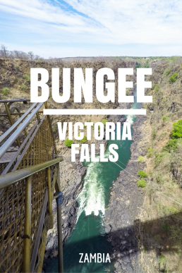 Jump from the epic Victoria Falls Bridge and free fall 110 meters towards the crocodile-infested Zambezi River!