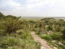 Naabi Hill viewpoint with a stunning panorama to the endless plains of Serengeti