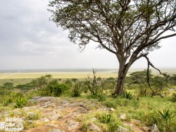 Naabi Hill lookout upon the plains of Serengeti