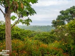 View from Ndali Lodge towards Rwenzori mountains
