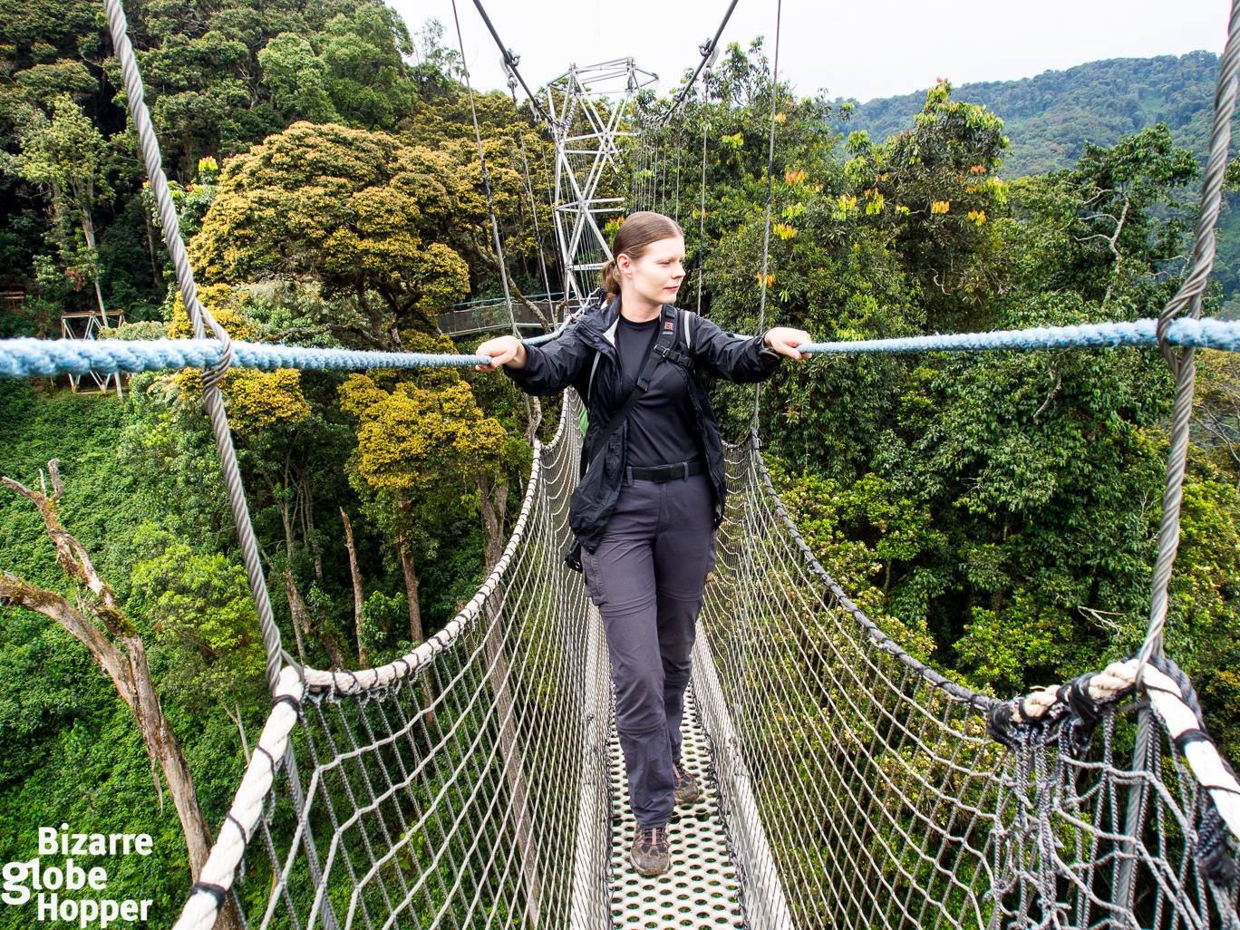 Piritta walking on Nyungwe Forest canopy walkway Rwanda  sc 1 st  Bizarre Globe Hopper & Canopy Trekking in Nyungwe Forest Rwanda u2013 Bizarre Globe Hopper