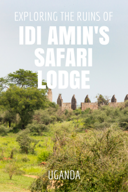 Idi Amin's favorite hideaway is now home to ferocious lions. Explore the ruins of Pakuba Lodge with us!