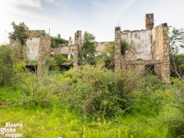 The overgrown Pakuba Lodge ruins, seen from the hilltop