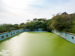 The gorgeously dilapidated swimming pool of the old Pakuba Lodge
