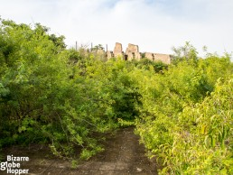 The overgrown path from the swimming pool to the old Pakuba Lodge ruins