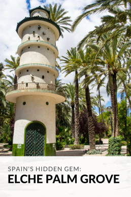 Have you ever heard of the Europe's biggest palm grove? Walk below 200 000 palm trees and lose yourself in the Museo del Palmeral.