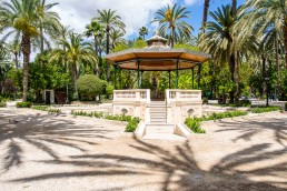 Visit Elche Palm Grove in Spain, the biggest palm grove in Europe!