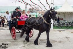 Horse carriages showing off during Feria de Sevillanas