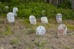 Bike to the Golden Gate – and Presidio pet cemetery near Golden Gate Park!