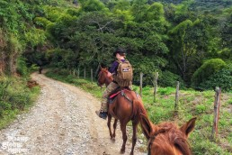 Horseback riding, in San Agustin, Colombia