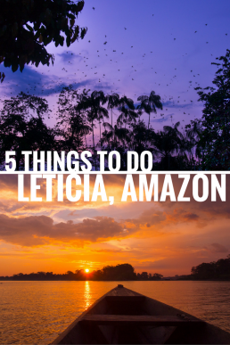 Leticia is a perfect base for Amazon adventures! Spot dolphins, eat casabes, witness parrots losing it at sunset and visit Peru or Brazil!