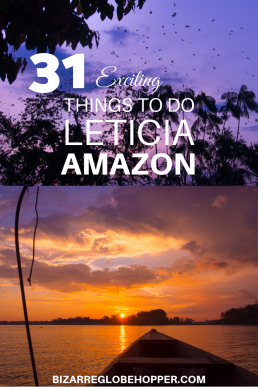 Leticia in the Colombian Amazon has exciting sights and things to do. Find the best Amazon tours, spot pink dolphins, take jungle hikes and river safaris to reveal the wildlife of the Amazon, taste local jungle foods, go zip-lining or kayaking, and learn jungle skills! #Leticia #Amazon #Colombia #Amazonas #colombianos #jungle #dolphins