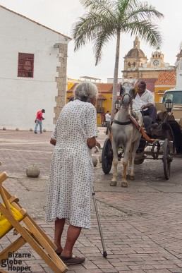 Old lady watching horse carriages passing by just before sunset hour, Cartagena