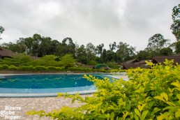 The swimming pool of MY Nature Resort - the only one in Sepilok