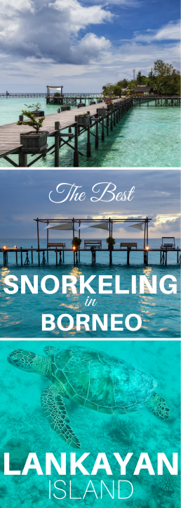#Lankayan Island in #Borneo offers world-class snorkeling right from the shore – without the crowds. Swim with the turtles, spot rays and sharks and marvel colorful, healthy coral reefs!
