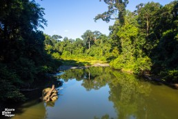 Danum River pierces the primary rainforest of Danum Valley in Sabah, Borneo