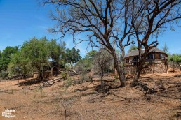Chalets of Baluleni Safari Lodge by Olifants River in Balule Nature Reserve